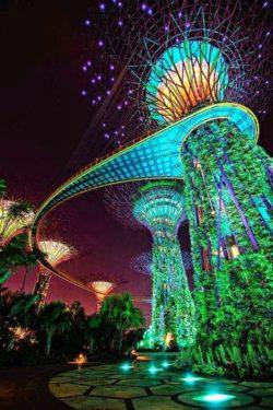 Singapur, Ogrody i Podróże