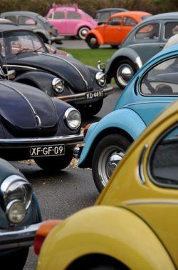 Garbusy i Volkswagen