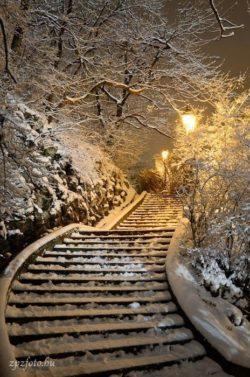 Natura,zima