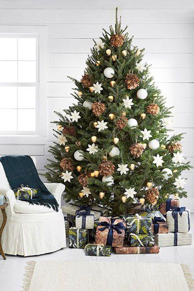 Drzewa, Choinki, Boże narodzenie