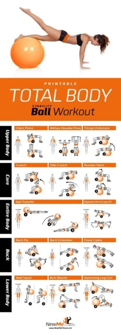 Fitball and Workout